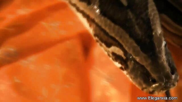 बालों वाली योनी के सेक्सी मूवी वीडियो में सेक्सी साथ गर्म परिपक्व कुतिया